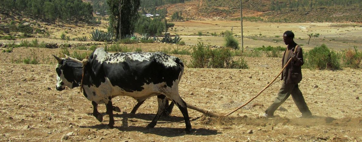 EU supports Ethiopia ambitious agenda