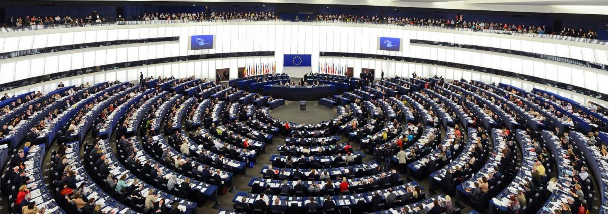 MEPs condemn Cameroon use of force