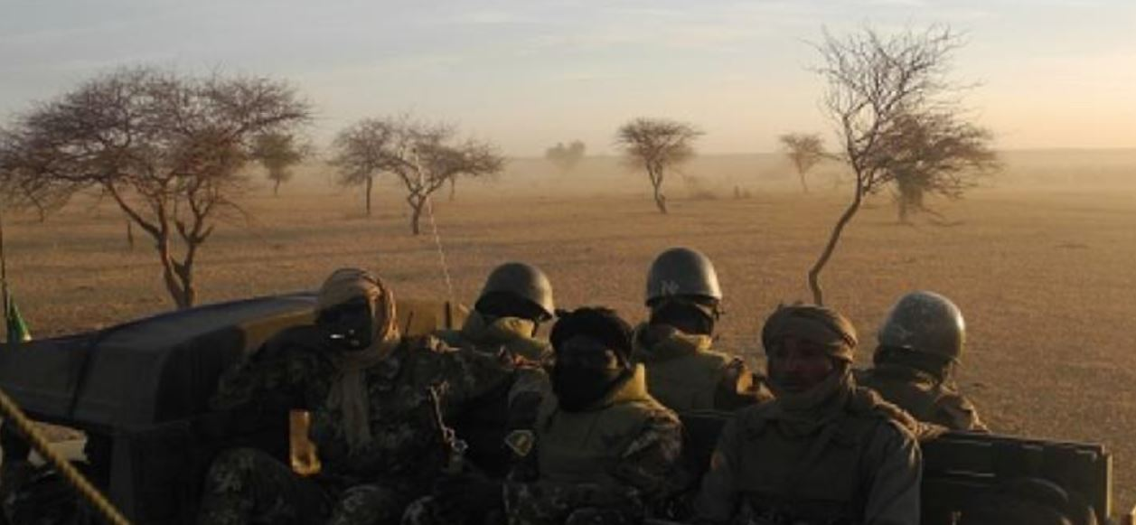 Niger military slain in ambush