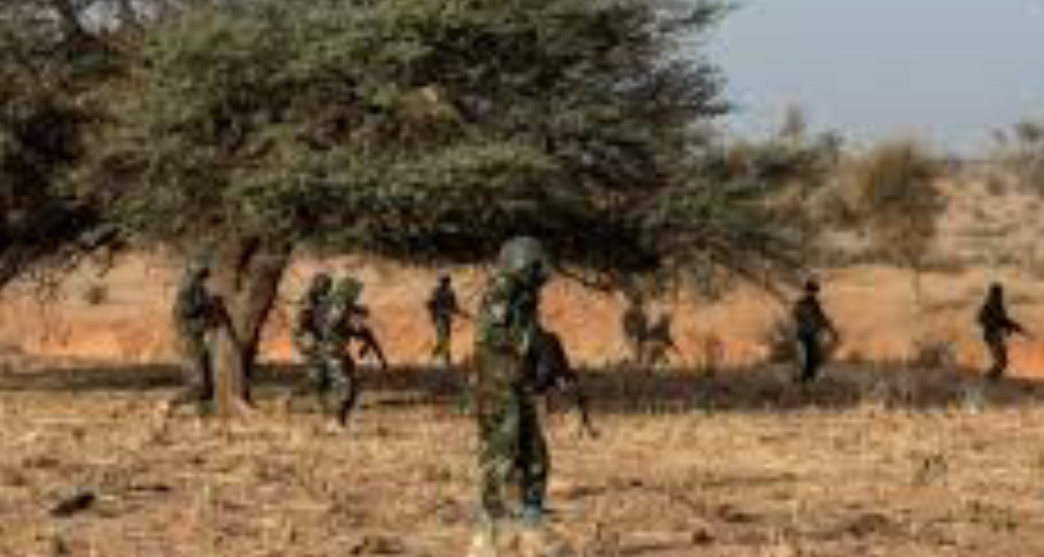 Niger soldiers killed and wounded