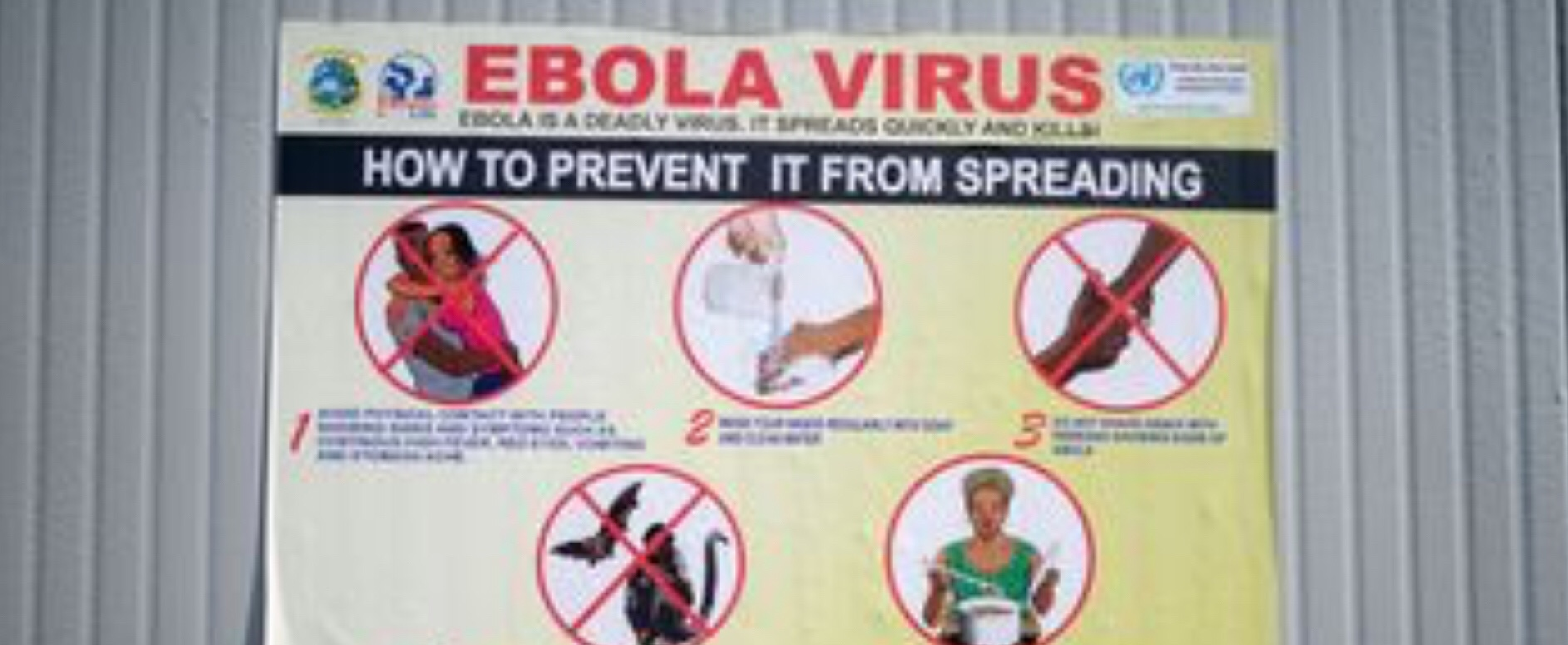 AU confirms Ebola outbreak